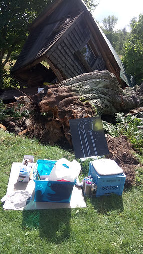 After the tree fell on the barn