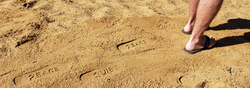 Steve_Catalog_Footprints