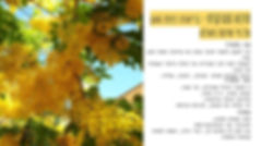 Copy of הזמנה לסדנאת שיטת פאולה (3).jpg