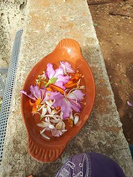 פרחים בקערה.jpg