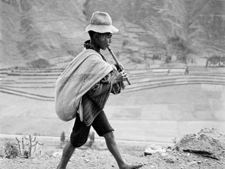 Exploring the True Face of the World - an Introduction to Werner Bischof