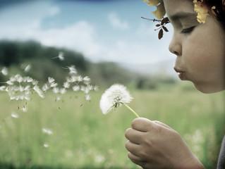 Felicidade - um bem durável, reciclável ou descartável? Sempre