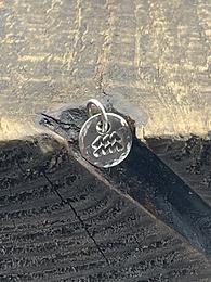 Aquarius Sterling Silver Pebble Charm