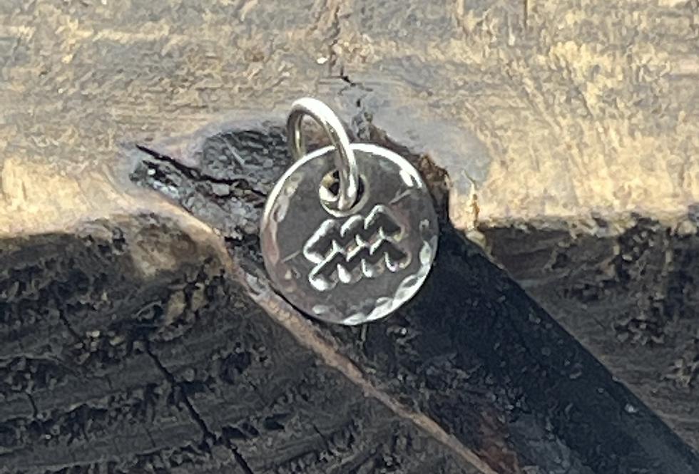 Aquarius Sterling Silver Charm