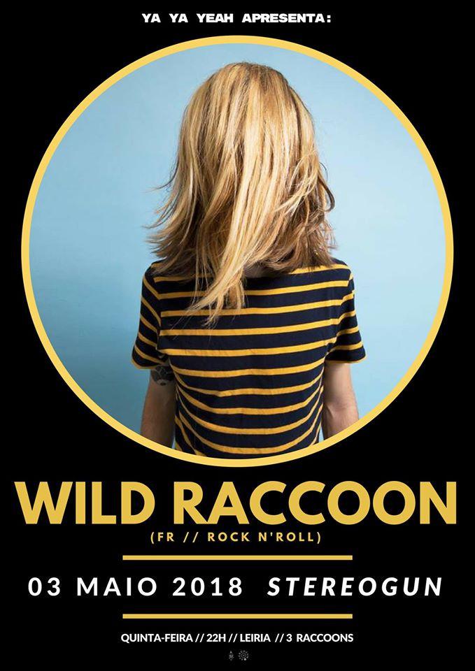 2018 Wild Raccoon