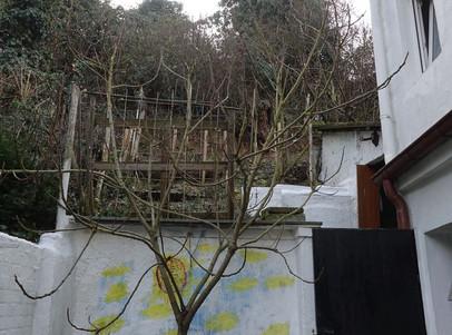 6079 Grundstück bis zu den oberen Bäumen