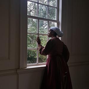 Inalienable Rights - Hampton Plantation