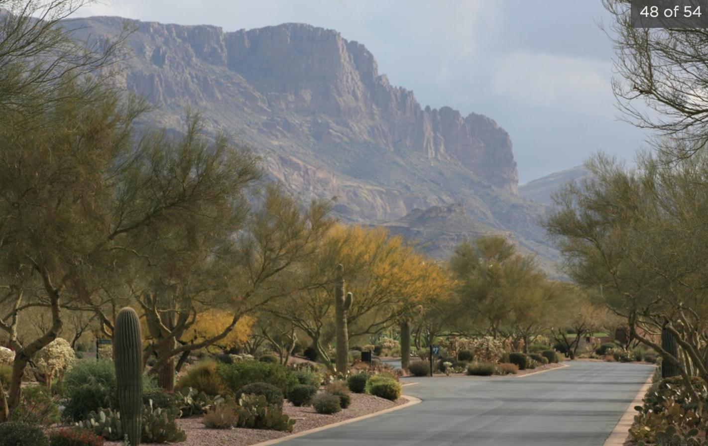 3762 S Spanish Bell Ct, Gold Canyon, AZ