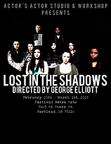 Lost_in_the_Shadows_Poster.png