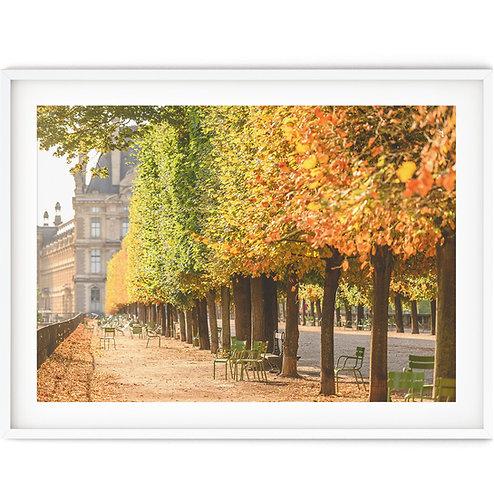 Jardin des Tuileries Early Autumn
