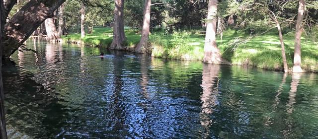 【日帰り、週末レジャー その2】『清流に飛び込め!』天然プール、Blue Holeで泳ぐ   Wimberley TX