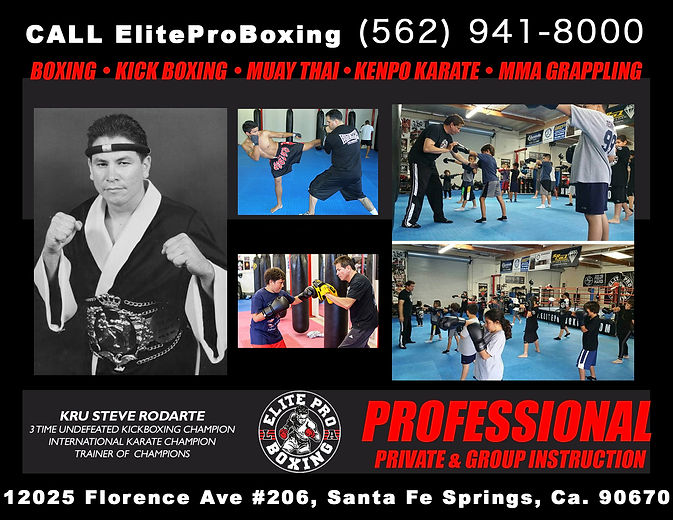 Check out our services at ELite Pro Boxing