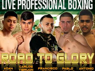 Elite Pro Boxing: Road to Glory