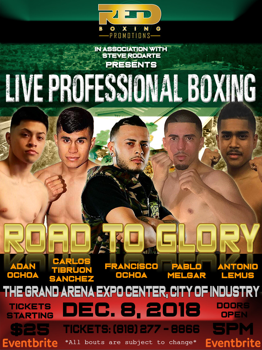 Live Professional Boxing Road to Glory