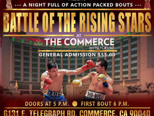 Elite Pro Boxing: Battle of the Rising Stars