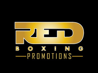 Elite Pro Boxing: Road to Glory