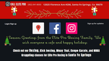 Elite Pro Boxing: Membership Xmas Discount