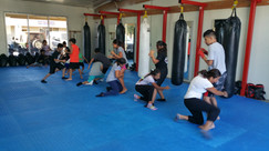 Elite Pro Boxing: Kids MMA Class