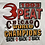 "Thumbnail: Vintage 1993 ""3-peat"" Chicago Bulls World Champions white t-shirt size large"