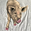 Thumbnail: Vintage pig butt t shirt size large