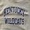 Thumbnail: Vintage University of Kentucky Wildcats Champion Reverse Weave gray sweatshirt s