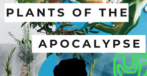 Plants of the Apocalypse - on studying herbology in 2020