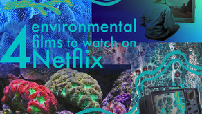 4 ESSENTIAL ENVIRONMENT FILMS TO WATCH ON NETFLIX