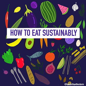 How To: make your diet more sustainable