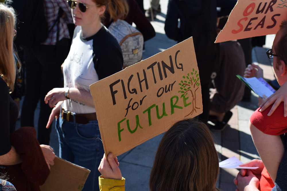 """An image from a climate protest. In the centre, a cardboard hand-painted sign reads """"fighting for our future""""."""
