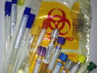 חשיבות בדיקות דם ובדיקות מעבדה בחיות מחמד