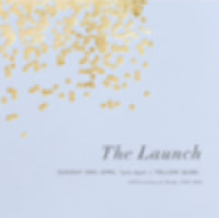 the launch.jpg