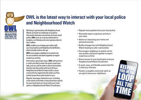 OWL%20poster_edited.jpg