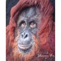 Needle Felted Orangutan Portrait
