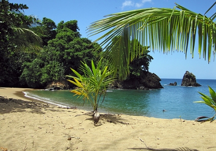 beach-photo-trinidad-tobago-caribbean-englishman-s-bay