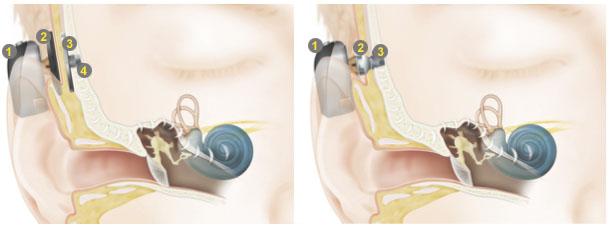 Quail Creek Ear, Nose & Throat