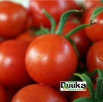 Tomatoes London Duuka