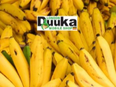 Apple Bananas - Box