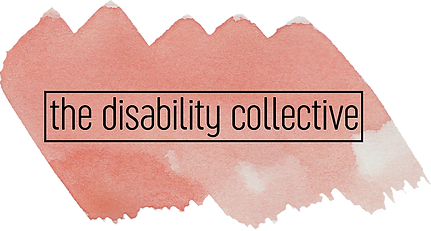 The Disability Collective Logo featuring the company name in black font against a coral swatch of water colour paint.