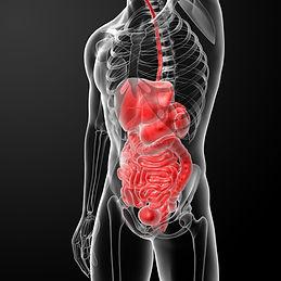shutterstock-internal-organ-injury.jpg