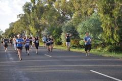 Whats on runners 1.jpg