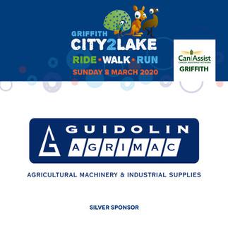 city2lake sponsor - silver - guidolin ag