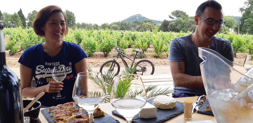 Dégustation dans les vignes à la Londe les Maures