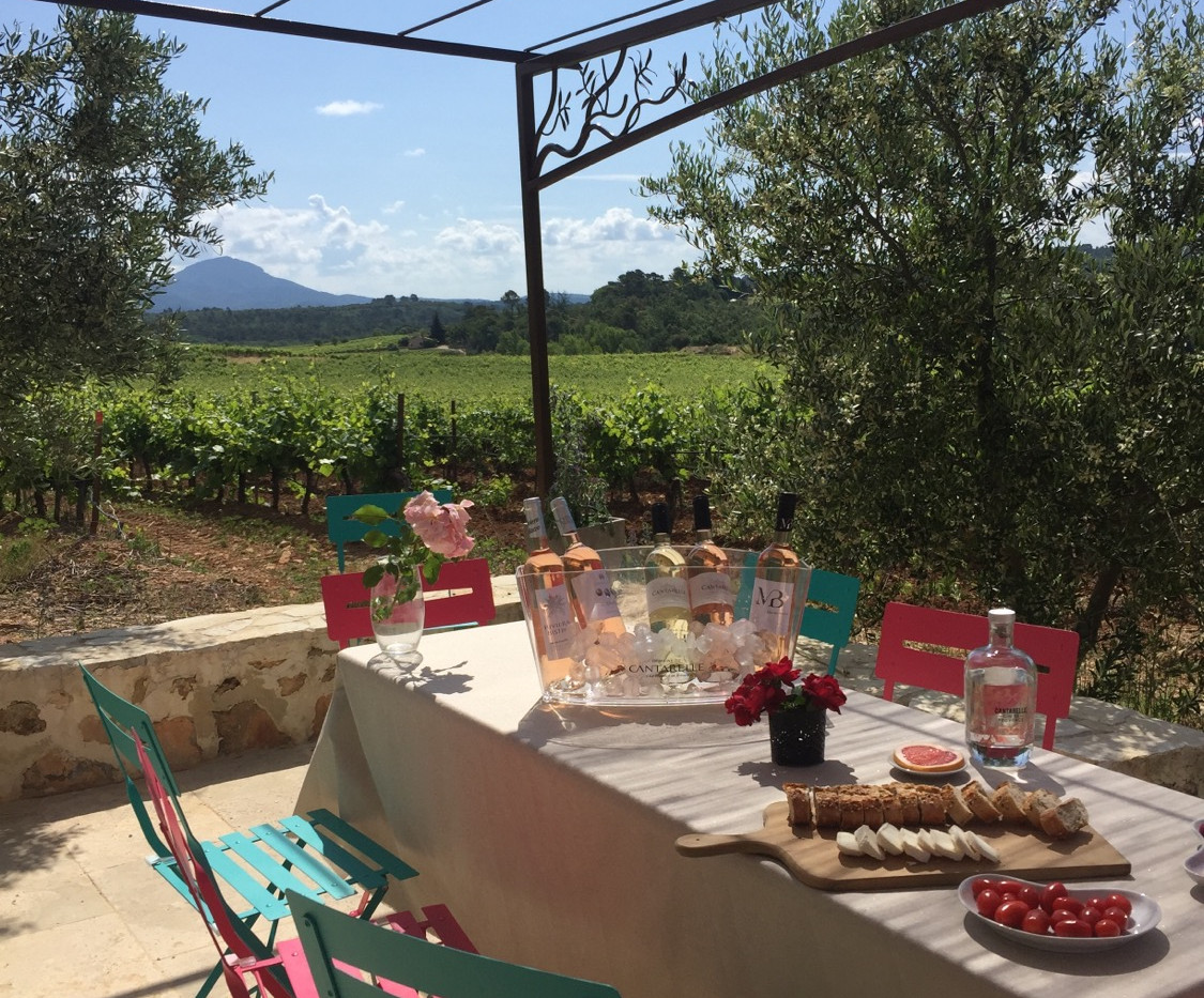 Découverte d'un vignoble provençal et de sa distillerie