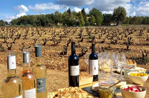 Rando en VTTae et dégustation dans les vignes à la Londe les Maures