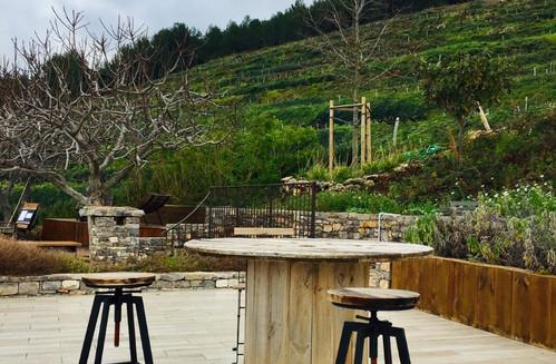 Dégustation face aux vignes - la Cadière d'Azur