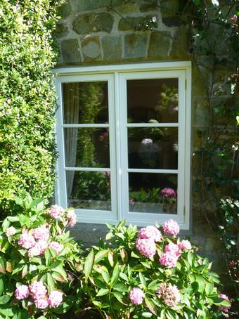 Hazledon Window Flowers