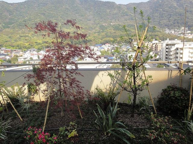 リフォーム屋上緑化 北九州