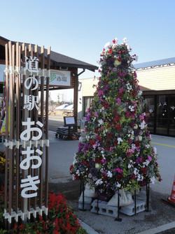 クリスマス 壁面緑化 ツリー 大木町