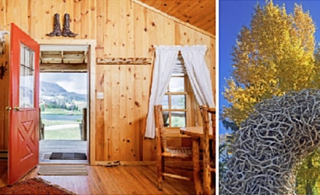 Brooks Lake Lodge & Spa Makes It Easy to 'Fall for the Arts' in Jackson Hole