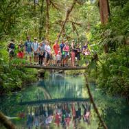 Džungla Tenorio